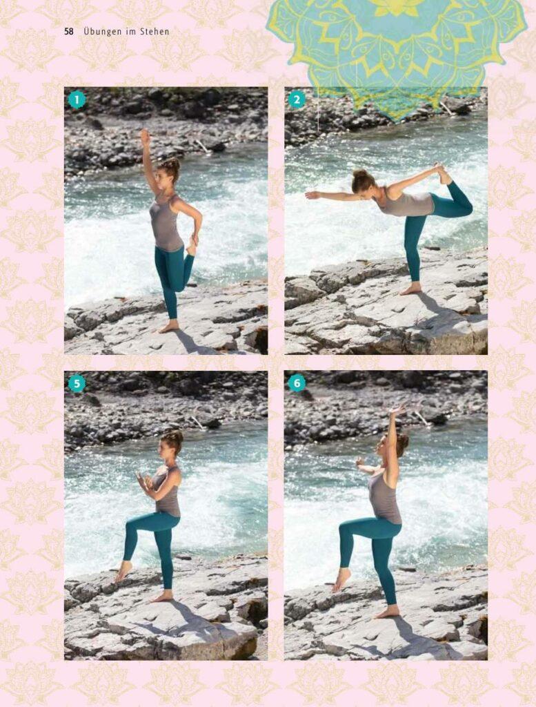 Buddha Balance Buch Ausschnitt