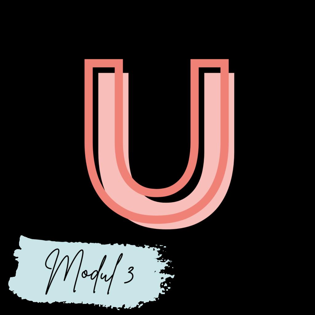 Online Make-up Kurs Modul 3